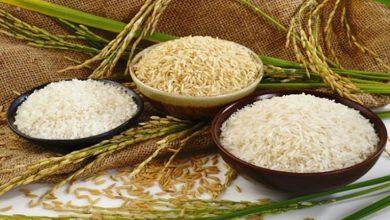 Photo of Bánh cuốn làm từ bột gạo gì?